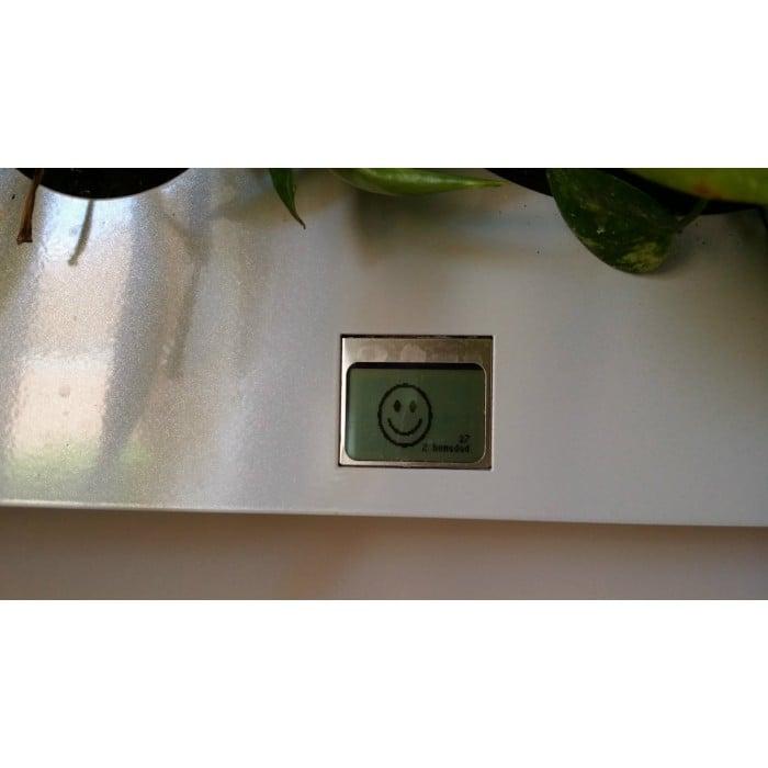 Sensor cuadro vegetal mi jard n vertical - Cuadro jardin vertical ...