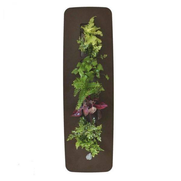Cuadro vegetal columna mi jard n vertical for Cuadro jardin vertical