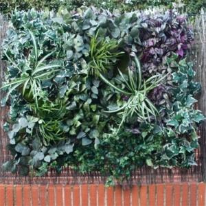 jardin vertical artificial