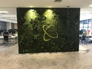 Jardin Interior Preservado Oficina