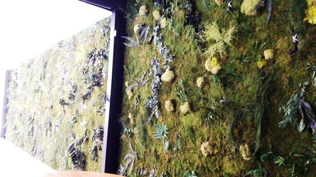 Pared Interior jardin preservado