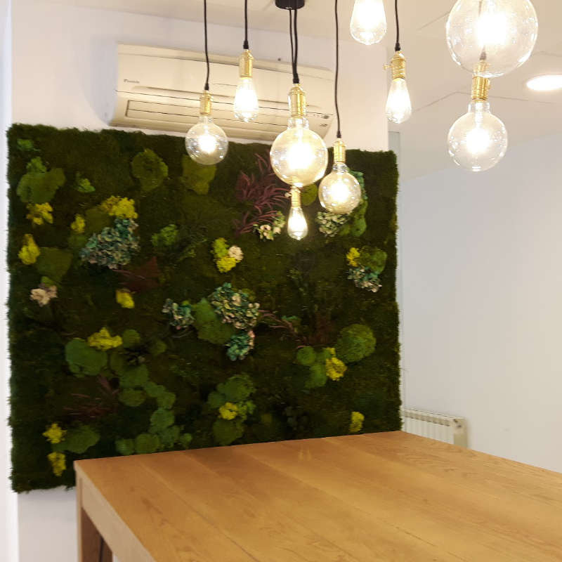 Jardines verticales oficinas