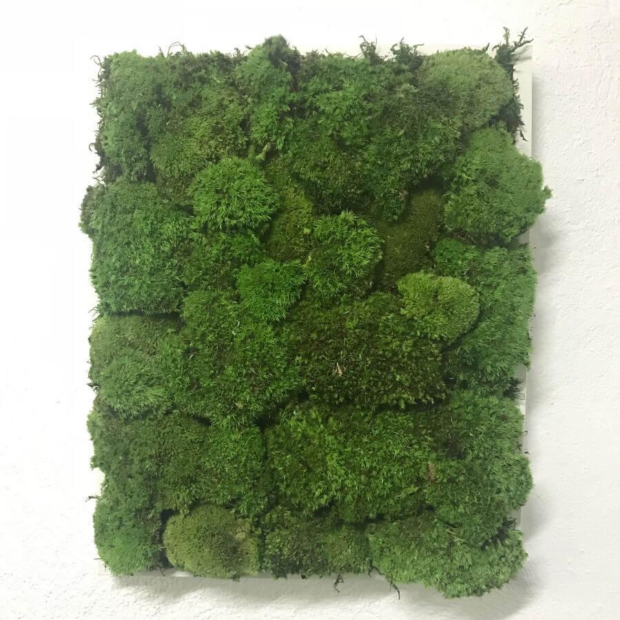Cuadro vegetal elaborado artesanalmente a base de musgo preservado tipo bola