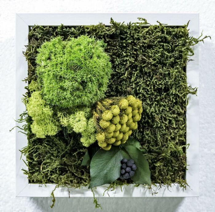 Cuadro Vegetal Soho