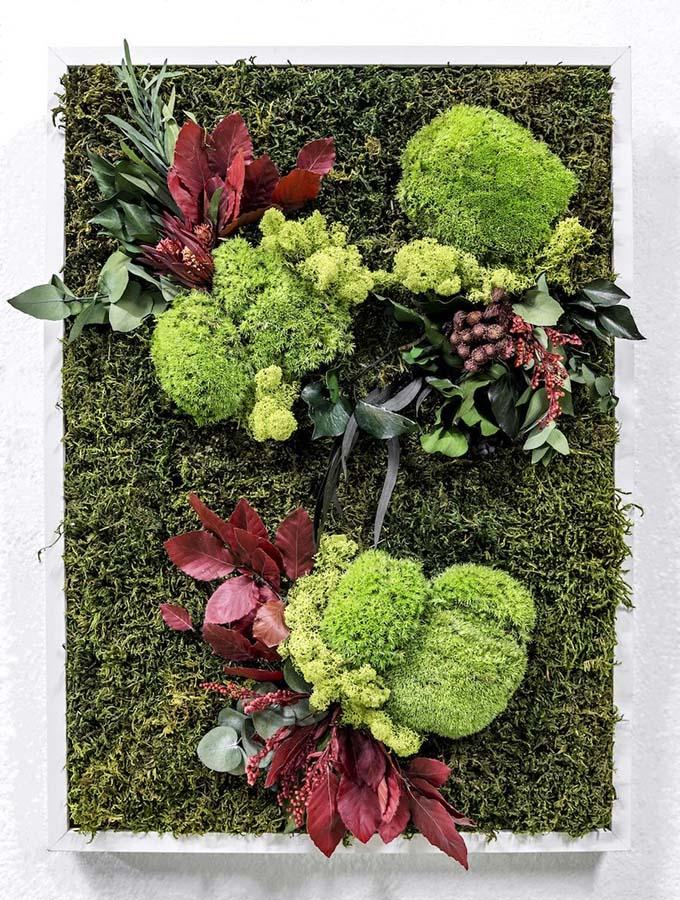 cuadros vegetales españa