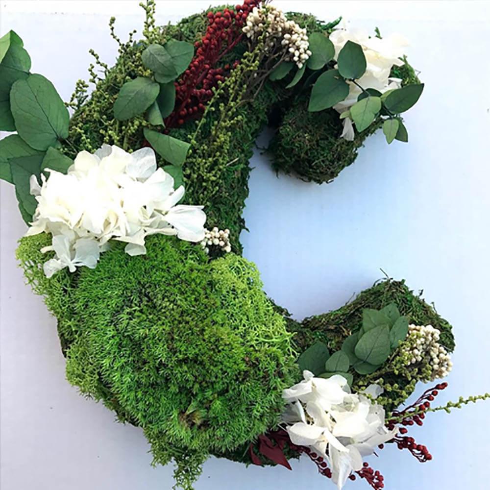 Logos diseñados con plantas