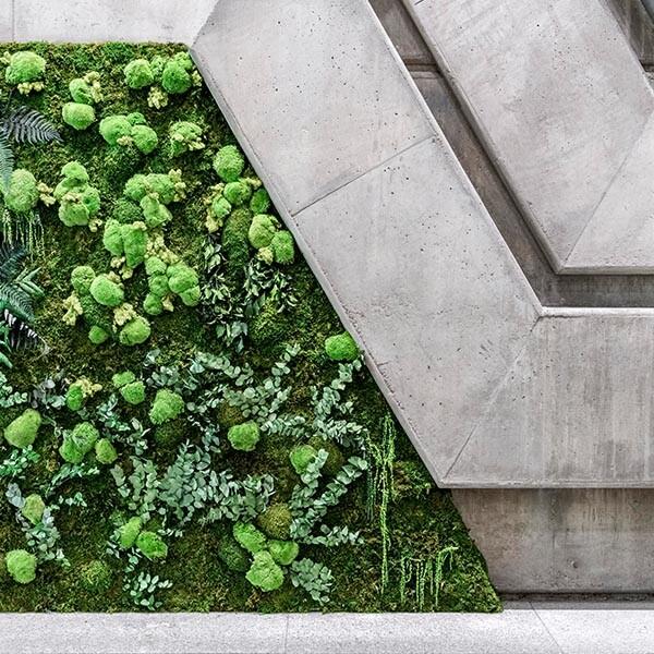 muro vertical verde para empresas