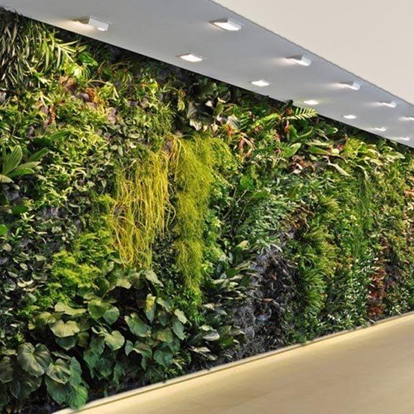 muro vertical, decoración con jardines verticales
